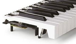 TP/8 PIANO