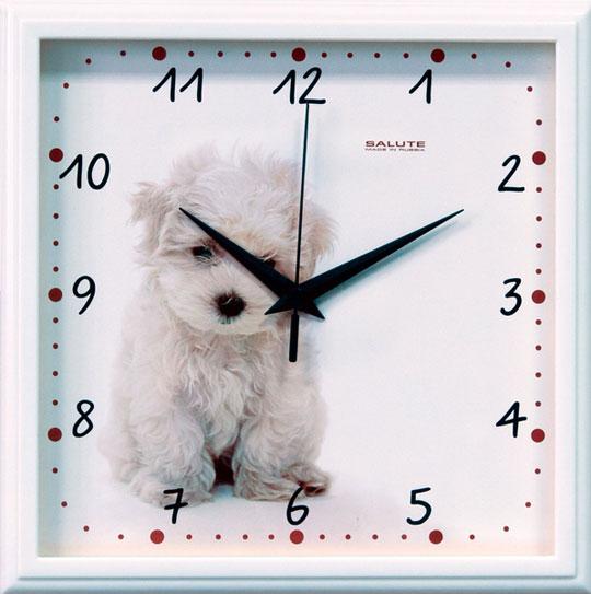 Настенные часы Салют P-2A7-391-SHHENOK