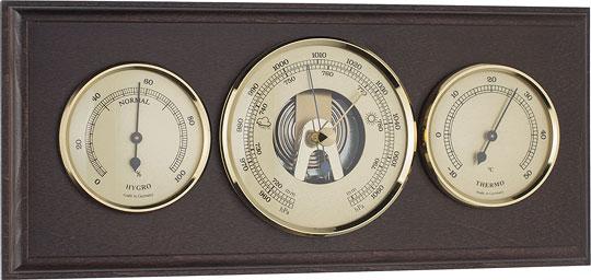 Настенные часы Tomas Stern 2020_TS