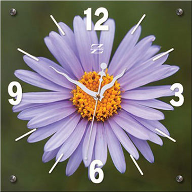 Настенные часы Zero Branko ZB-0392