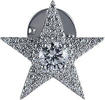 Броши Element47 by JV SO-B0055 броши jv серебряная брошь кулон с перламутром bls 39 shgl wg
