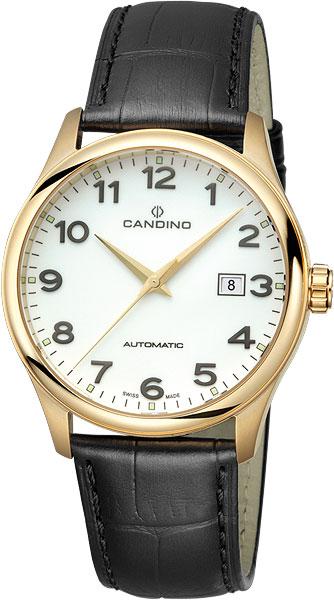 Мужские часы Candino C4459_1 все цены