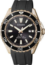 Citizen BN0193-17E