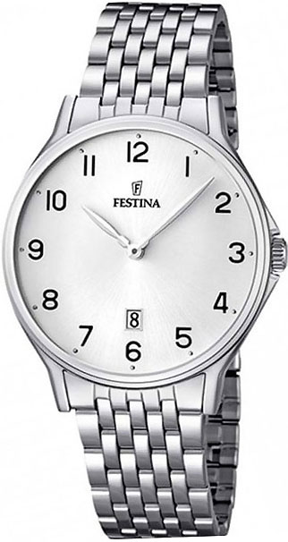 Мужские часы Festina F16744/1