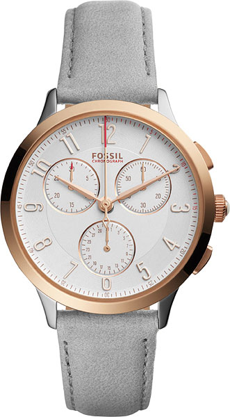 цена Женские часы Fossil CH3071 онлайн в 2017 году