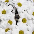 Наручные часы Ника 0311.2.1.53C — купить в интернет-магазине AllTime ... 0ff8061d27f