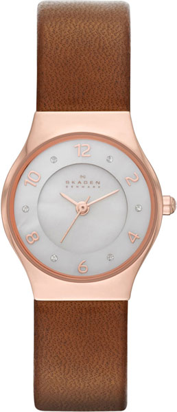 Женские часы Skagen SKW2210 все цены