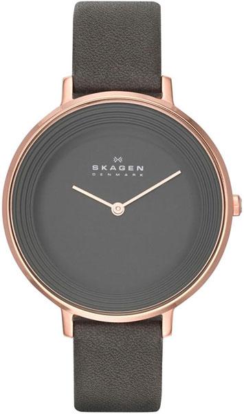 Женские часы Skagen SKW2216 skagen skw2216 skagen