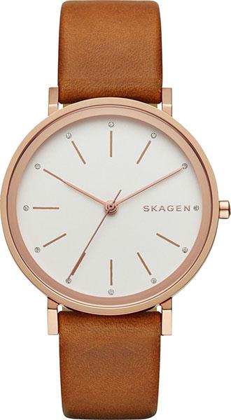где купить Женские часы Skagen SKW2488 по лучшей цене