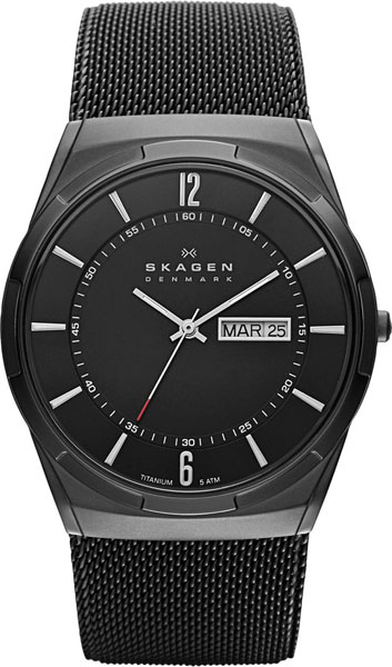 Мужские часы Skagen SKW6006