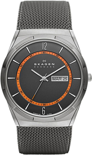 Мужские часы Skagen SKW6007
