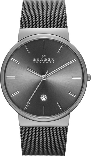 Купить Мужские Часы Skagen Skw6108