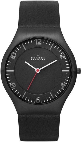 цена  Мужские часы Skagen SKW6113  онлайн в 2017 году