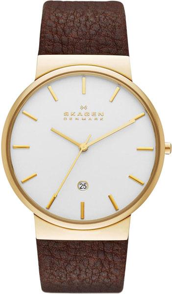 Мужские часы Skagen SKW6142
