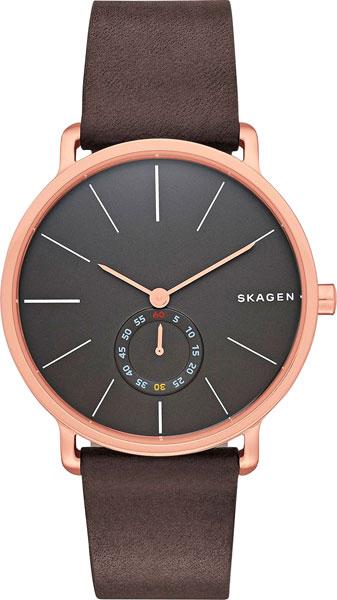 Мужские часы Skagen SKW6213