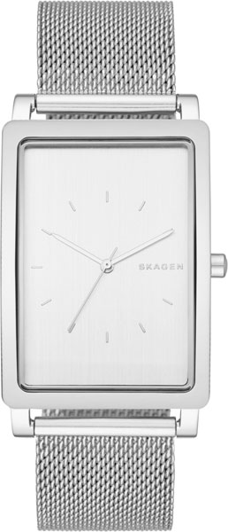 Мужские часы Skagen SKW6288