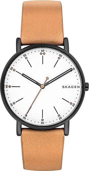 Мужские часы Skagen SKW6352 все цены