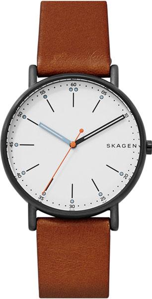 Мужские часы Skagen SKW6374