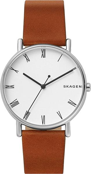 Мужские часы Skagen SKW6427 все цены