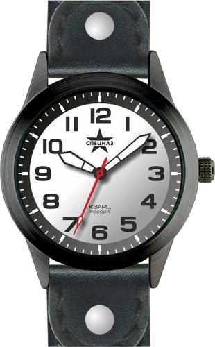 Мужские часы Спецназ C2034295-05