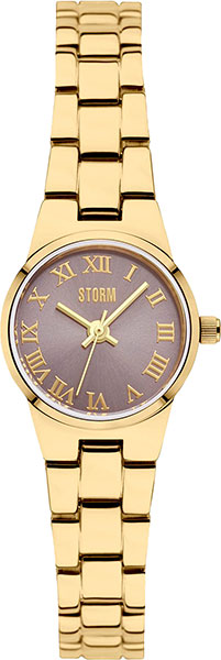 Женские часы Storm ST-47284/GD женские часы storm st 47318 gd
