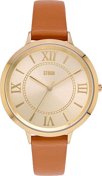 Часы Storm ST-47292/TAN Часы DKNY NY8834