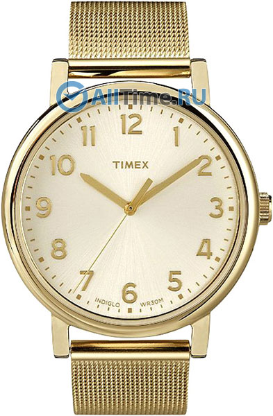 Мужские часы Timex T2N598